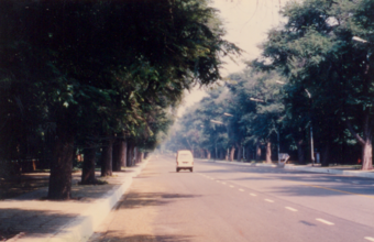 Photograph 8 – Road in sub-zone grade 1 Residential