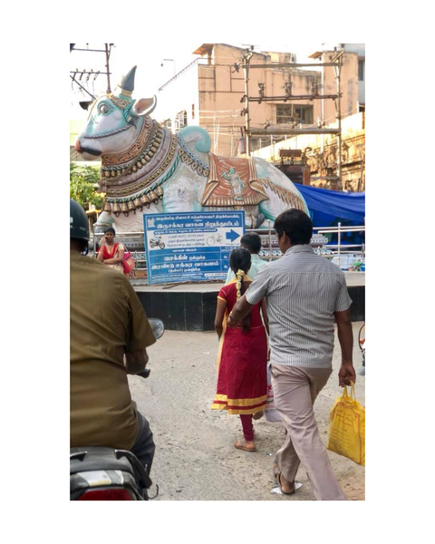 Along the outer streets of Madurai Meenakshi temple