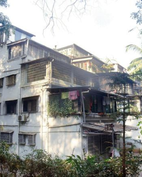 The C-type building in LIC Colony had step terraces (now closed), so that a relationship could be established between the forest and the buildings.